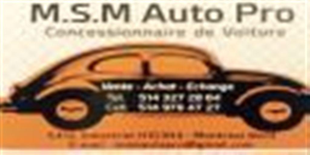 M.S.M. Auto Pro Inc.
