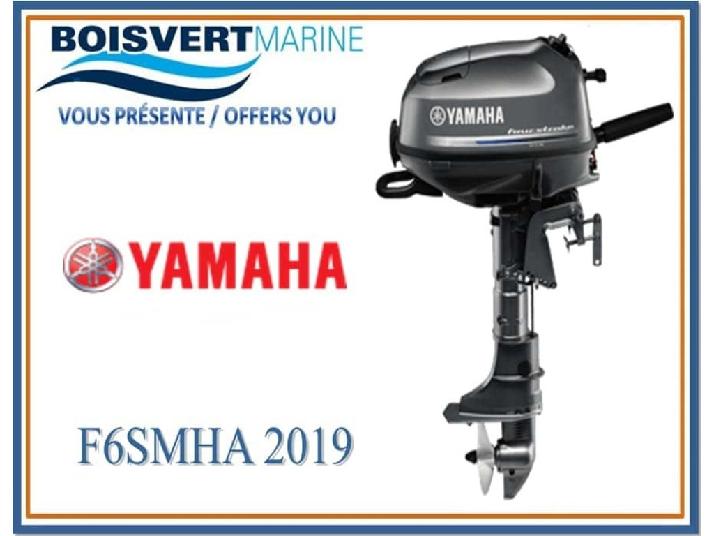 2019 Yamaha boat for sale, model of the boat is F6smha (pied Court) & Image # 1 of 1