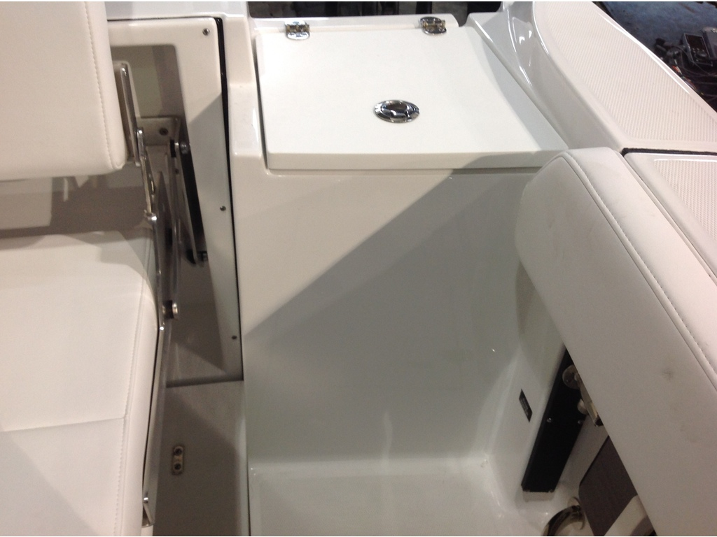 2020 Blackfin boat for sale, model of the boat is 242cc & Image # 17 of 30