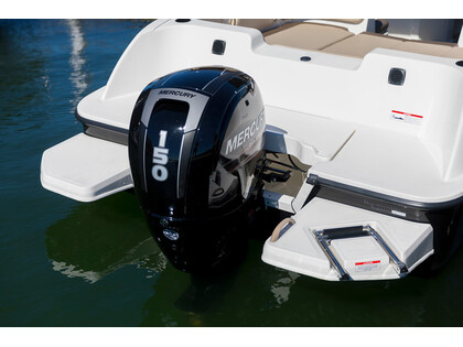 2019 Bayliner ELEMENT 180