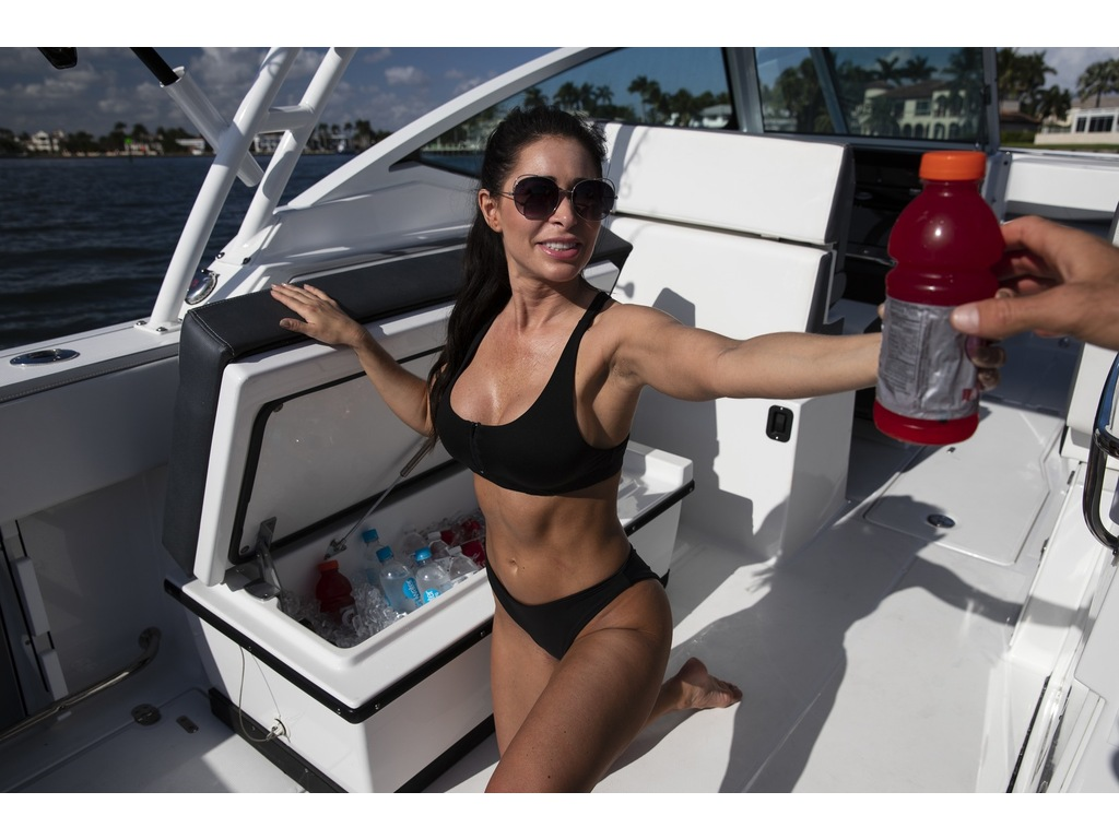2021 Blackfin boat for sale, model of the boat is 272 Dc  & Image # 4 of 4