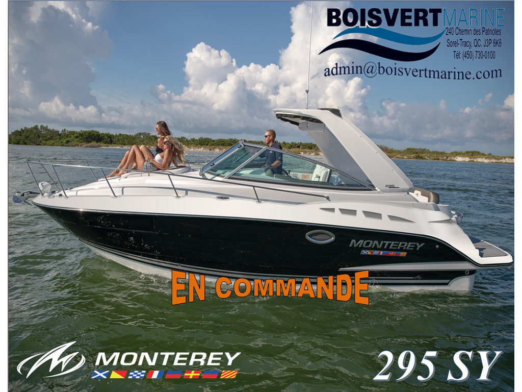 2021 Monterey boat for sale, model of the boat is 295 Sy (artic Ice/onyx) & Image # 1 of 4
