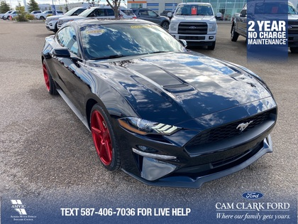 used 2019 Ford Mustang car, priced at $29,363